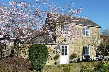 White Rose Cottage Constable Burton