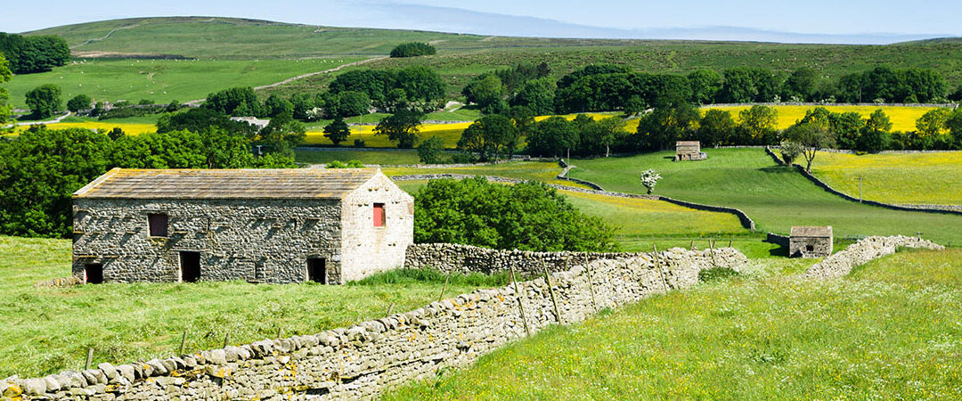 Timothy Barber's Real Yorkshire Travel and Tours